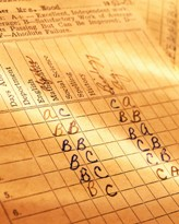 Small Report Card